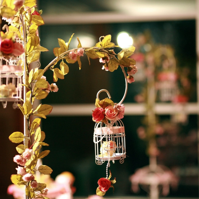 """""""cage flowers for Wedding reception"""" stock image"""