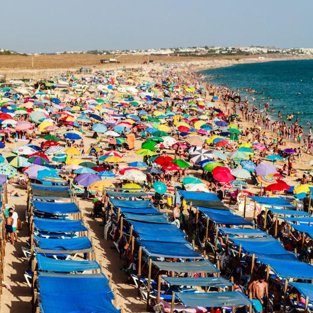"""Human hanthill in Algarve, Portugal 2017"" stock image"