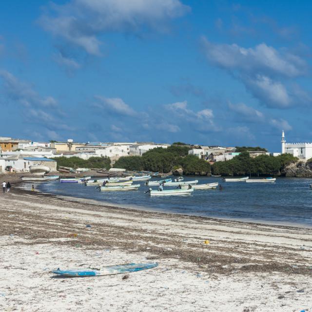 """The town of Jazeera at the end of Jazeera beach, Somalia"" stock image"