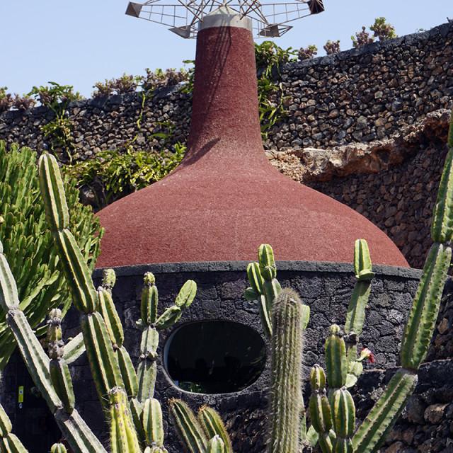 """""""Jardin de Cactus 4"""" stock image"""
