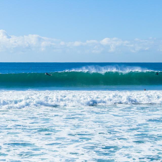 """""""Surfers Ocean Waves"""" stock image"""