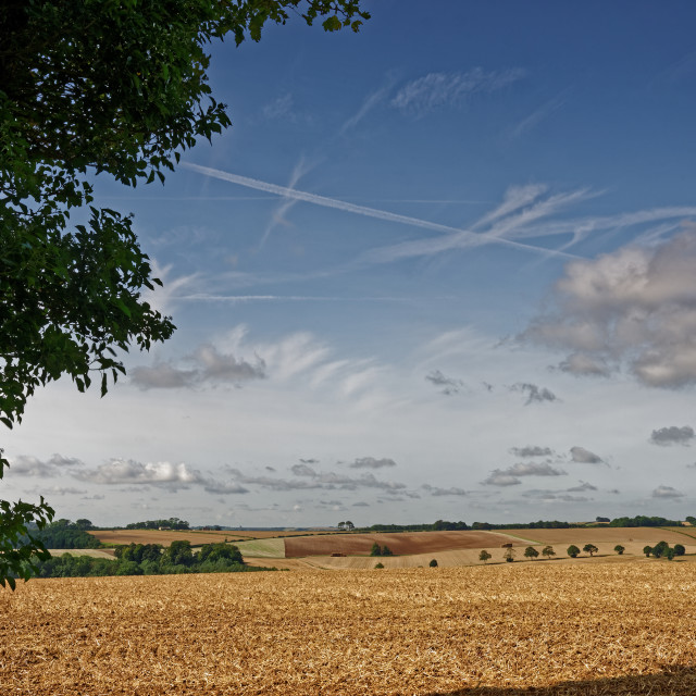 """Lincolnshire Wolds,UK, in Late Summer"" stock image"