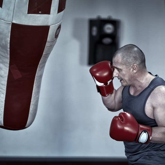 """""""Boxer working with punching bag"""" stock image"""