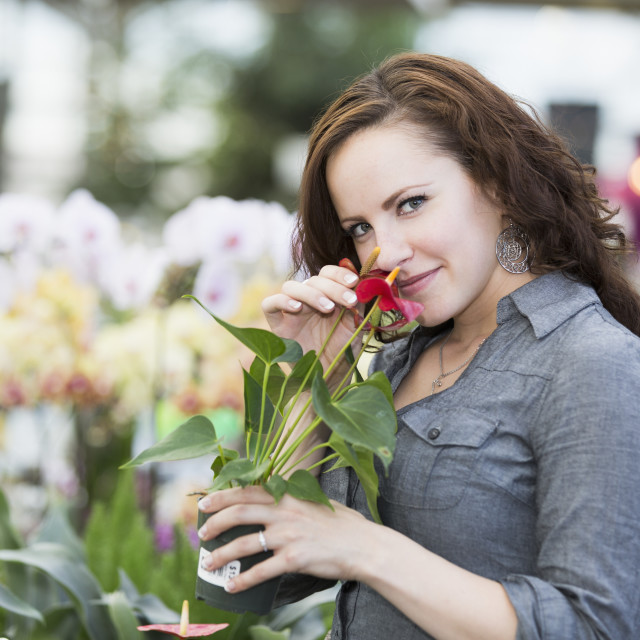 """Young woman looking at plants and flower in an indoor greenhouse; St...."" stock image"
