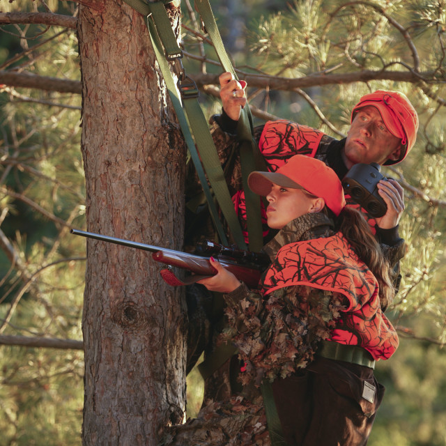 """""""Female Hunter Climbs Into Tree Stand While Deer Hunting"""" stock image"""