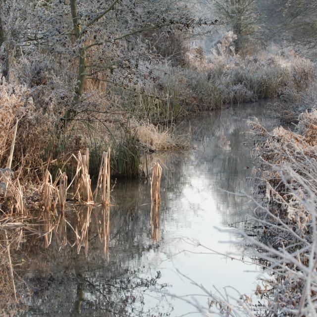 """Mid Winter"" stock image"