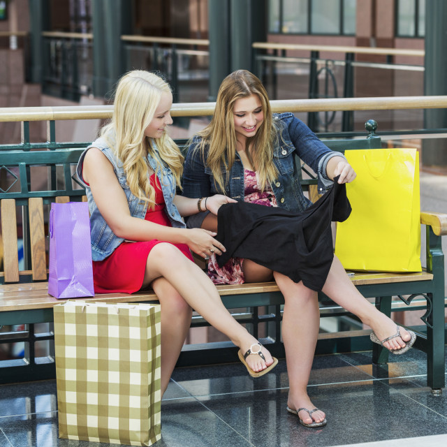 """""""Two beautiful young girlfriends checking out their shopping purchases..."""" stock image"""