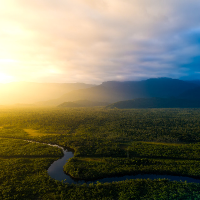 """Aerial View of a Rainforest in Brazil"" stock image"