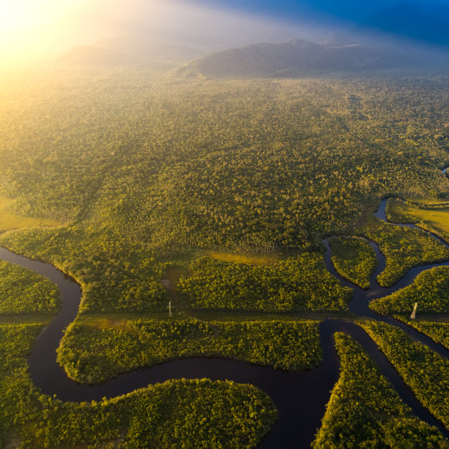 """""""Aerial View of a Rainforest in Brazil"""" stock image"""