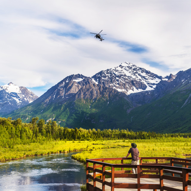 """A man is standing on the Eagle River Nature Center boardwalk while a Black..."" stock image"