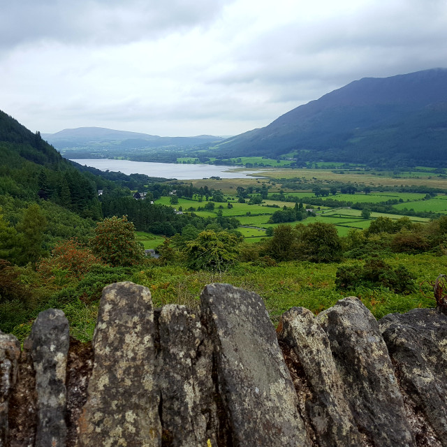 """View from Whinlatter"" stock image"