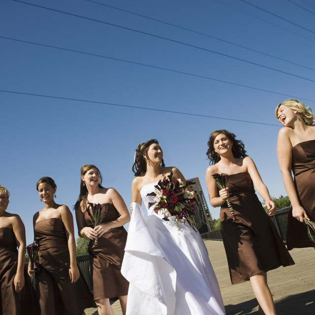 """""""Bride And Bridesmaids"""" stock image"""