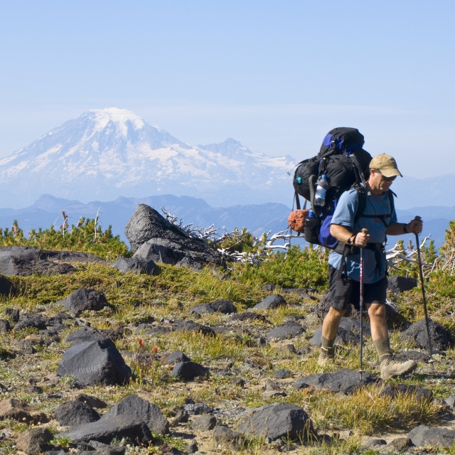 """""""Mount Adams Wilderness Washington State Usa; Backpacker In Front Of Mount..."""" stock image"""