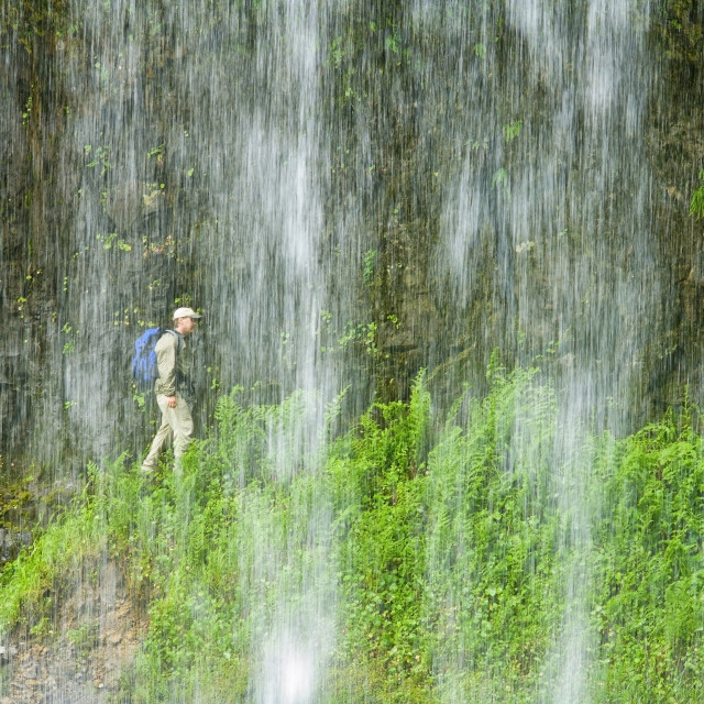 """""""Middle North Falls, Silver Falls State Park, Oregon, Usa; Hiker"""" stock image"""