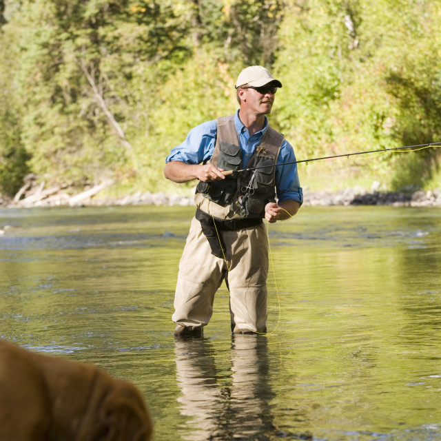 """""""Fly-Fishing Guide, Russ Trand, Fly-Fishing On Tributary Of Elk River Near..."""" stock image"""