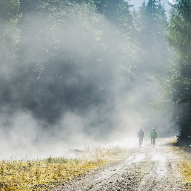 """Two Senior Men Cycle In The Fog On The Trans Canada Trail In The Cowichan..."" stock image"