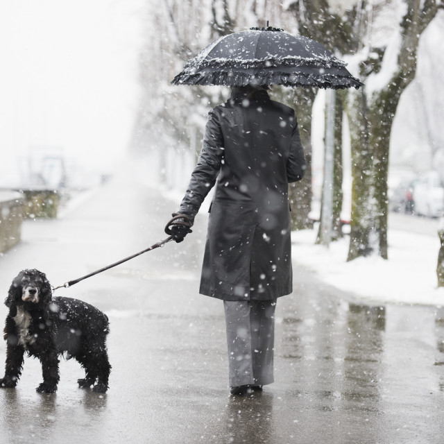 """""""A woman walking her dog in a snowfall;Locarno ticino switzerland"""" stock image"""