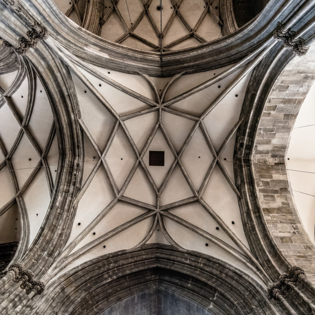 """Vaults of Cathedral of St Stephen in Vienna"" stock image"