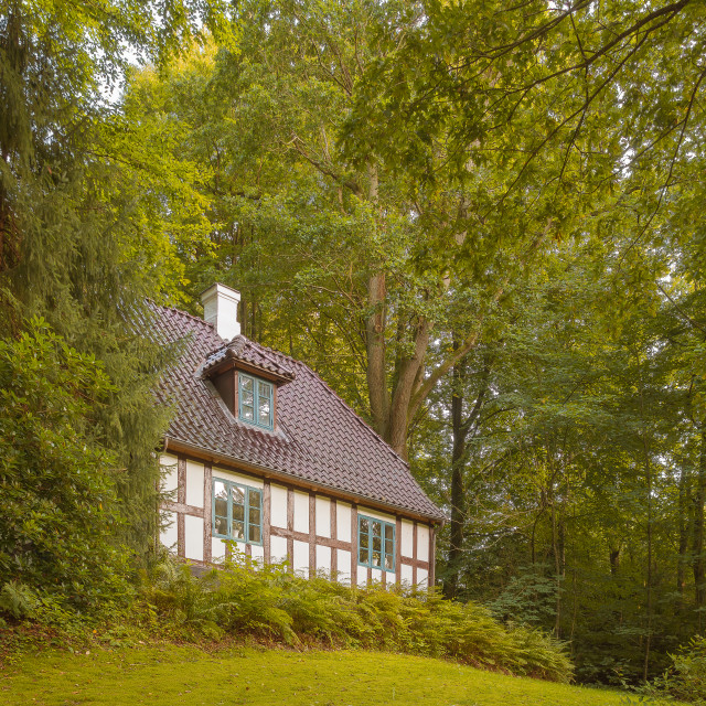 """Old half-timbered white house on a hilltop in the green forest"" stock image"