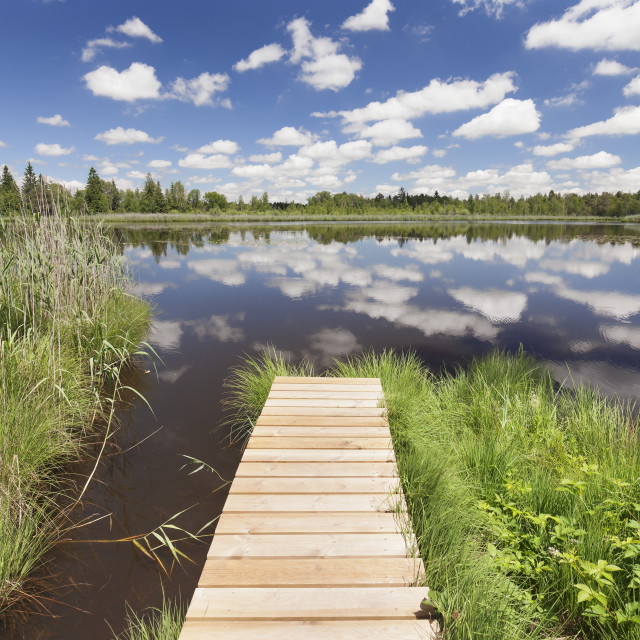 """""""Jetty and cumulus clouds, Wurzacher Ried Moor, Bad Wurzach, Upper Swabia,..."""" stock image"""