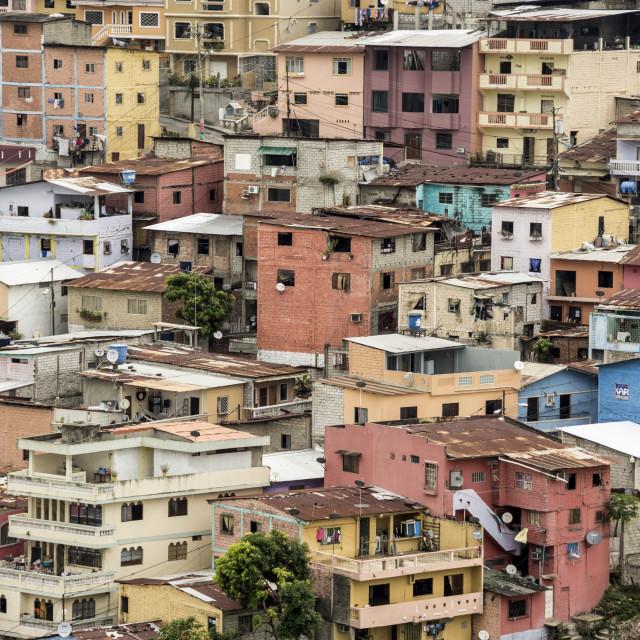 """Ecuador; Guayaquil; Las Penas barrio, historic centre on the hill of Cerro..."" stock image"