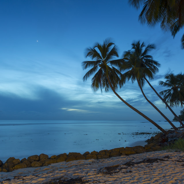 """Savannah Beach, Bridgetown, Christ Church, Barbados, West Indies, Caribbean,..."" stock image"