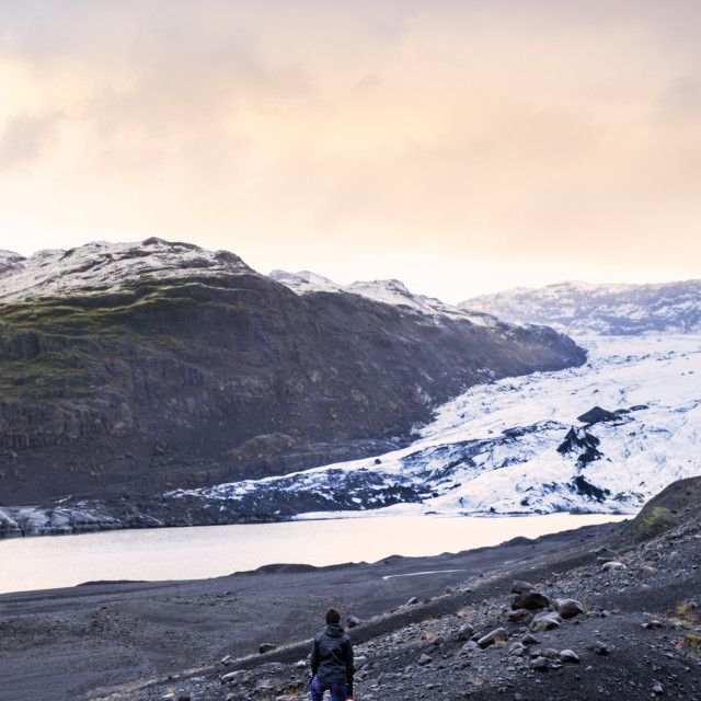 """Hiker in front of the Vatnajokull glacier in Vatnajokull National Park in..."" stock image"
