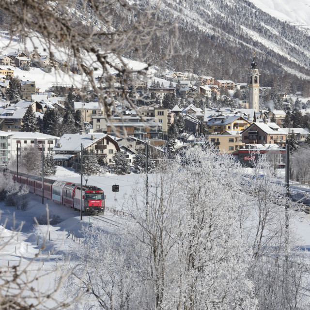 """The red train runs across the snowy landscape around Samedan Maloja, Canton..."" stock image"