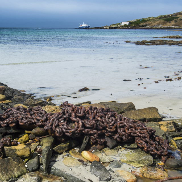 """Rusty chain on a beach, Carcass Island, Falkland Islands, South America"" stock image"