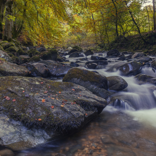 """""""The Moness Burn flowing through the rocks within the Birks of Aberfeldy in..."""" stock image"""