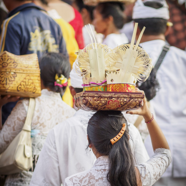 """""""Women carrying offering to the temple on their heads, Pemuteran, Bali,..."""" stock image"""