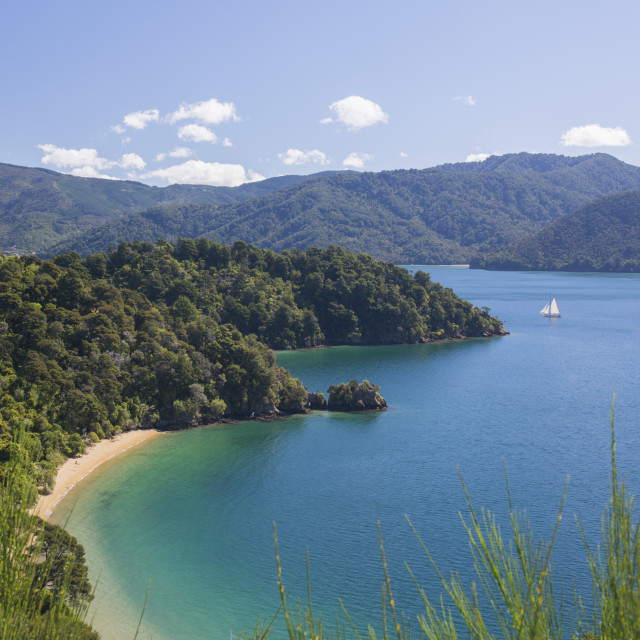 """View over Governors Bay and Grove Arm, Queen Charlotte Sound (Marlborough..."" stock image"
