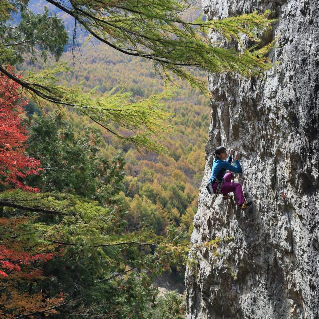 """A woman rock climbing at Ogawayama, a mountain on the border of Nagano and..."" stock image"