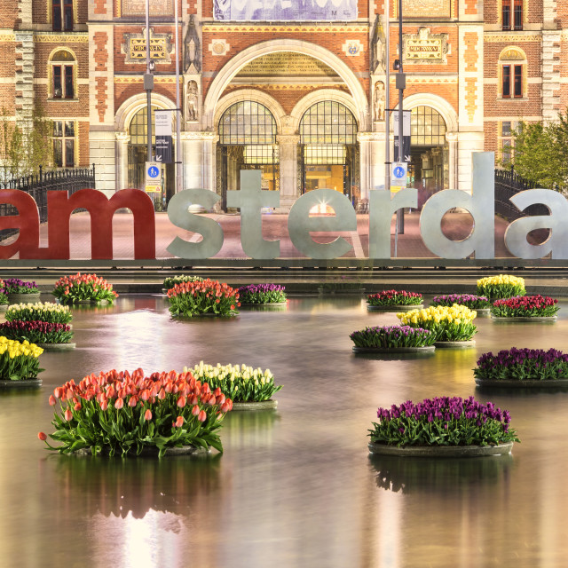 """""""The National Rijksmuseum framed by vases of flowers floating in water..."""" stock image"""