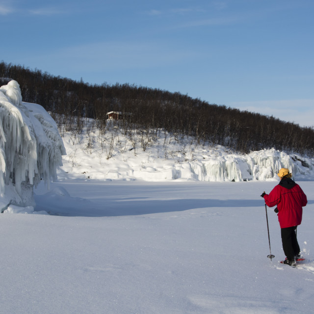 """A woman walking across frozen Tornetrask Lake, Abisko National Park, Sweden."" stock image"