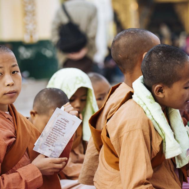 """Novice Nuns chanting at Shwedagon Pagoda, Yangon, Myanmar"" stock image"