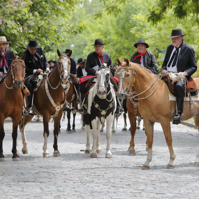 """""""Gaucho parade on the Day of Tradition, San Antonio de Areco, La Pampa,..."""" stock image"""