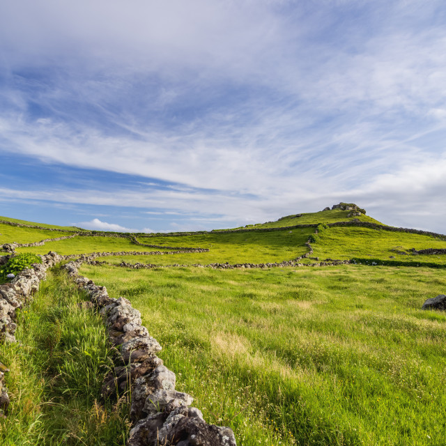 """Green fields on the Island, Corvo, Azores, Portugal, Atlantic, Europe"" stock image"