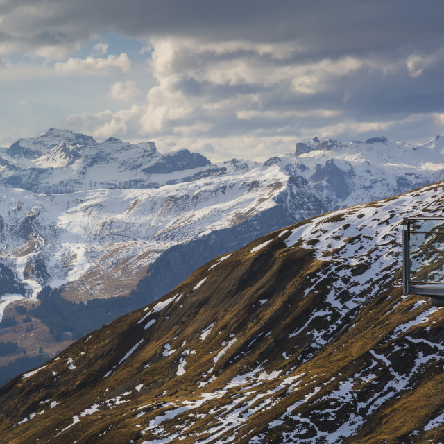 """""""View from Grindelwald First, Jungfrau region, Bernese Oberland, Swiss Alps,..."""" stock image"""