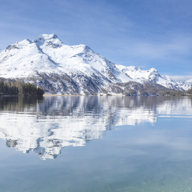 """The snowy peaks are reflected in the clear water of Lake Sils Maloja Canton..."" stock image"