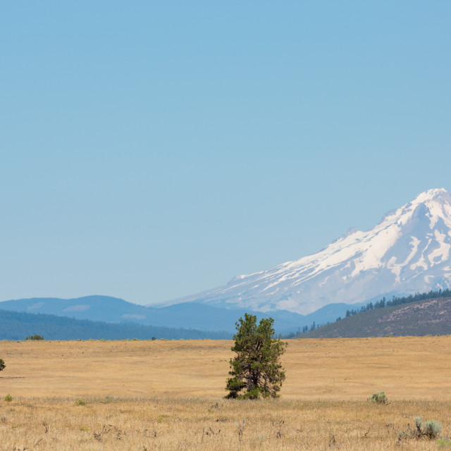 """Central Oregon's High Desert with Mt. Hood, part of the Cascade Range,..."" stock image"