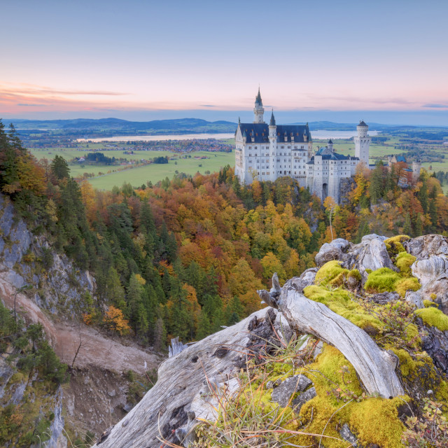 """Sunset on Neuschwanstein Castle surrounded by colorful woods in autumn..."" stock image"