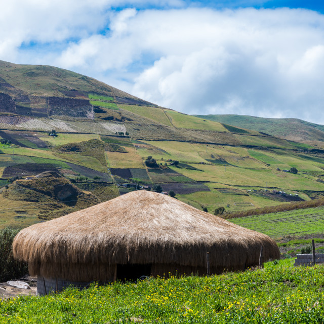 """""""A traditional straw house in the Ecuadorian Andes"""" stock image"""