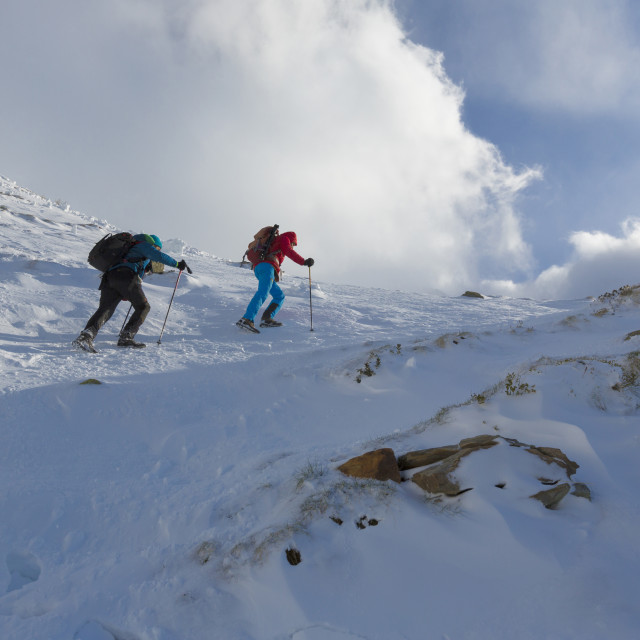 """""""Hikers proceed in the snowy valley of Alpe Fora Malenco Valley province of..."""" stock image"""