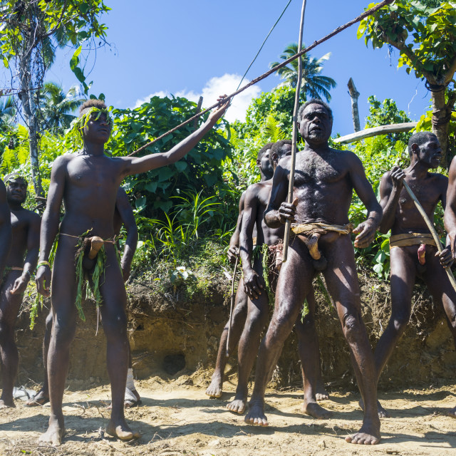 """Men dancing in preparation for the Pentecost land diving, Pentecost, Vanuatu"" stock image"