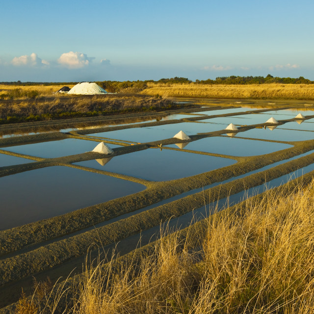 """Salt pans and piles of 'Fleur de Sel' around the Fier d'Ars marshes of the..."" stock image"