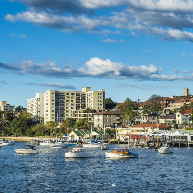 """""""Manly harbour, Sydney, New South Wales, Australia"""" stock image"""