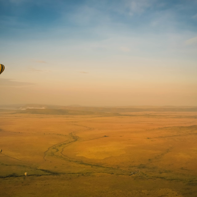 """Flying over the Serengeti"" stock image"