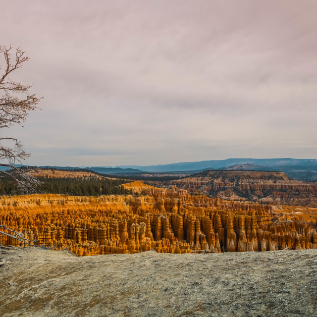 """Bryce Canyon National Park"" stock image"
