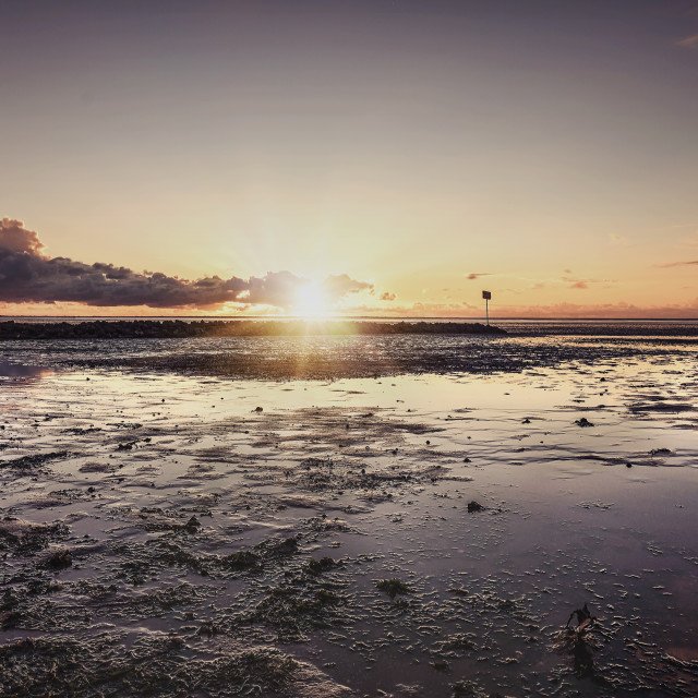 """""""Sunset in the Wattenmeer"""" stock image"""